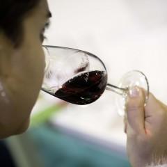 Cata de vinos ofrecida por D.O.P. Cangas